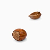Unshelled hazelnut and hazelnut shell
