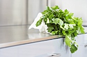 Fresh parsley on kitchen cabinet