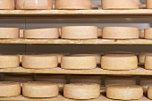 Cheeses stored on wooden shelves