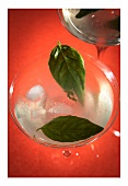 Lemon and basil vodka martini