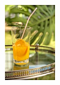 Harvey Wallbanger (cocktail with vodka and Galliano)