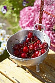 Fresh cherries in a colander with water being poured over them