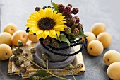 Decoration with sunflowers, sprigs of blackberries and apricots