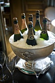 Champagne bottles being chilled in an ice bucket
