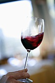 Degustation: swilling red wine in a glass
