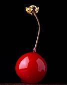 Glazed cherry
