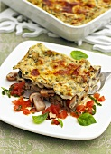 Lasagne with mushrooms and tomatoes