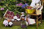 Fresh berries for jam-making and bottling