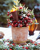 Advent arrangement of rose hips and bay leaves