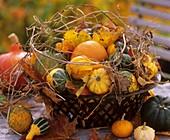 Autumn pumpkin still life