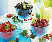 Red- and blackcurrants and gooseberries in small bowls