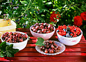 Assorted berries in small bowls on a garden table