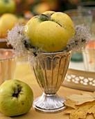 Quince on silver goblet
