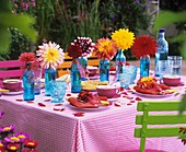 Table laid for coffee with colourful dahlias