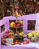 Tiered metal stand with apples, ornamental apples and quinces
