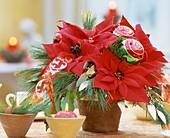 Adventsstrauß mit Weihnachtsstern und Kiefernzweigen