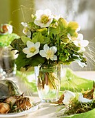 Frühlingssträußchen mit Christrosen