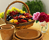 Basket of fruit & berries, terracotta pots, saucers & roses