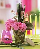 Schachtelhalm, Hortensien und Sterndolde in Vase mit Steinen