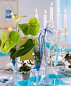 Flamingoblumen mit Fensterblatt, Glücksklee, Kerzenleuchter