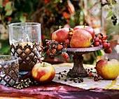 Fruit in iron bowl: apples & ornamental apples, rose hips