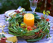 Table wreath of bean tendrils (Phaseolus) and candle