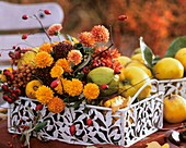 Metal tray with chrysanthemums, quinces, rose hips, Skimmia