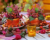 Cups, filled with rose hips and heather