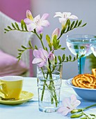 Freesias in glass standing on a table