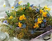 Kranz aus Heu, Narzissen, Traubenhyazinthen und Mimosen