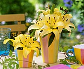 Yellow lilies as table decoration