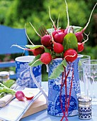 Bunch of radishes in blue and white jug