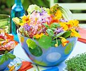 Salat mit Kapuzinerkresse, Borretsch, Dill und Basilikum