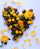 Roses, chestnuts, ornamental apples forming heart, flower petals