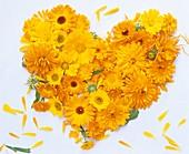 Heart of marigolds