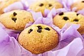 Saffron and raisin muffins