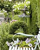 Romantischer Garten mit Buchsbaum und Petunien