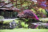 Japanischer Garten mit Teehaus und Teich