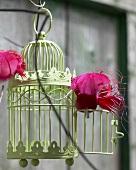 Birdcage in garden
