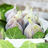 Fresh figs with leaves in box