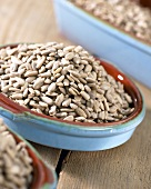 Sunflower seeds in pale blue dish