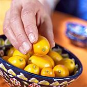 Hand reaching for kumquat