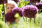Girl in garden with ornamental onions ('Pinball Wizard')