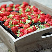 Strawberries in plastic punnets on wooden tray