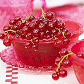 Red Currants in a Red Bowl