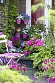 Sommerblumen auf Terrasse vor dem Haus