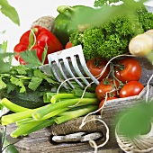 Fresh vegetables, kitchen string and garden tool
