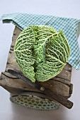 Savoy cabbage with old knife on wooden box