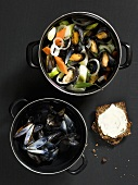 Rhineland style mussel stew (with carrots, onions, bay leaves)