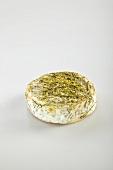 Olivet Foin (Weichkäse mit Heu, Loire)